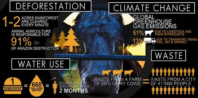 Cowspiracy - Infografik News - Unternehmensberatung - Nachhaltigkeit, Innovation & Regionalentwicklung