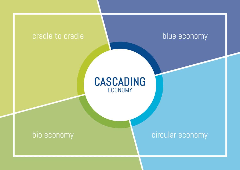 Cascading Economy - CLT - Nachhaltigkeitsberatung-Innovationsberatung-Regionalentwicklung-Systems Design