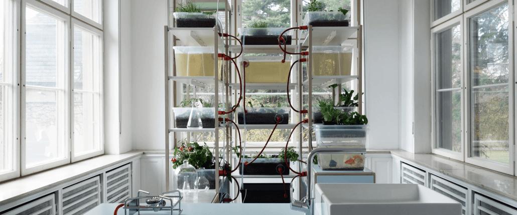 kitchen - Nachhaltigkeitsberatung-Innovationsberatung-Regionalentwicklung-Systems Design
